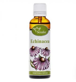 ECHINACEA - Z BYLIN 50 ml